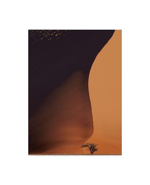 "Trademark Global Nina Papiorek 'Namibia The Dune' Canvas Art - 24"" x 32"""