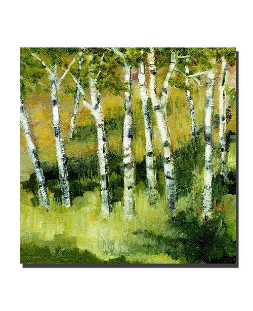 "Trademark Global Michelle Calkins 'Birch Trees' Canvas Art - 24"" x 24"""