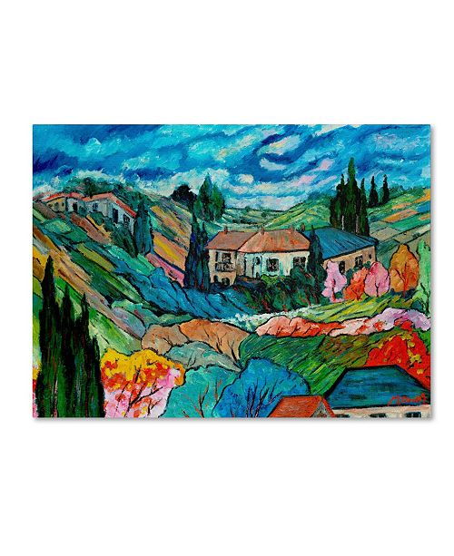 "Trademark Global Manor Shadian 'Valley House' Canvas Art - 32"" x 24"""