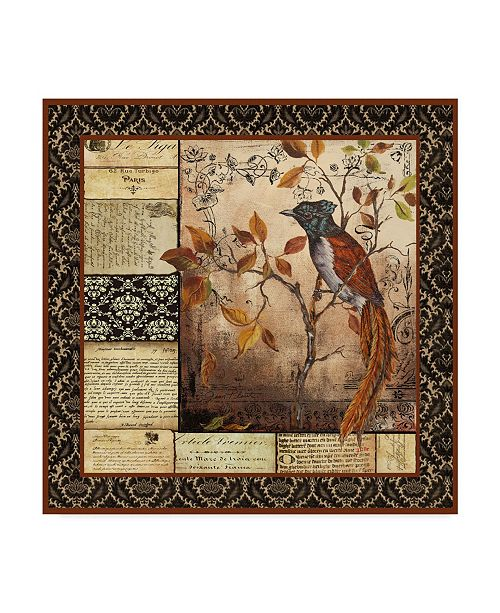 """Trademark Global Jean Plout 'Paradise Flycatcher Collage' Canvas Art - 14"""" x 14"""""""