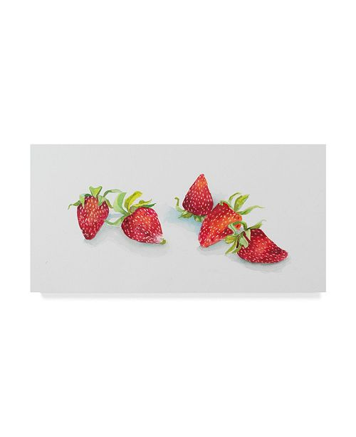 "Trademark Global Joanne Porter 'Ripe Berries Whole' Canvas Art - 10"" x 19"""