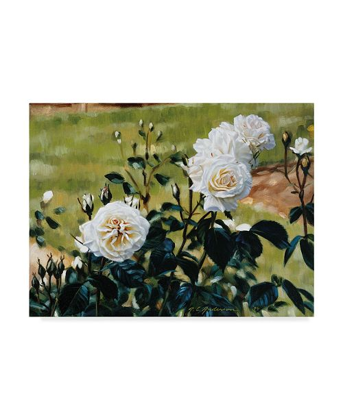 """Trademark Global Robin Anderson 'White Roses' Canvas Art - 14"""" x 19"""""""