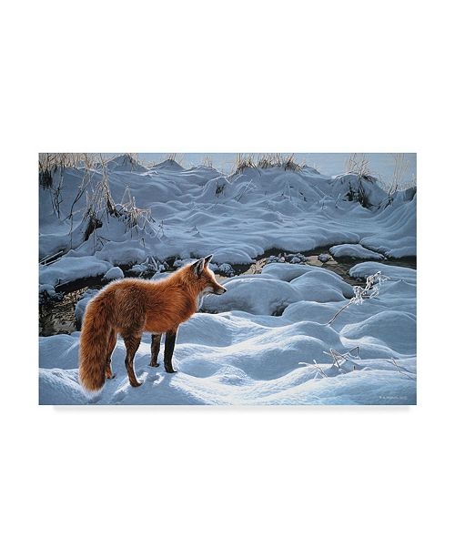 """Trademark Global Ron Parker 'Icy Morning Red Fox' Canvas Art - 12"""" x 19"""""""