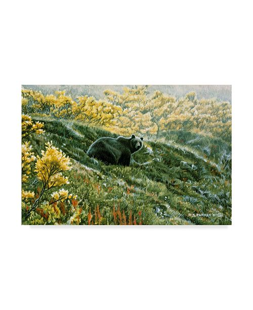 """Trademark Global Ron Parker 'Grizzly In The Blueberries' Canvas Art - 12"""" x 19"""""""