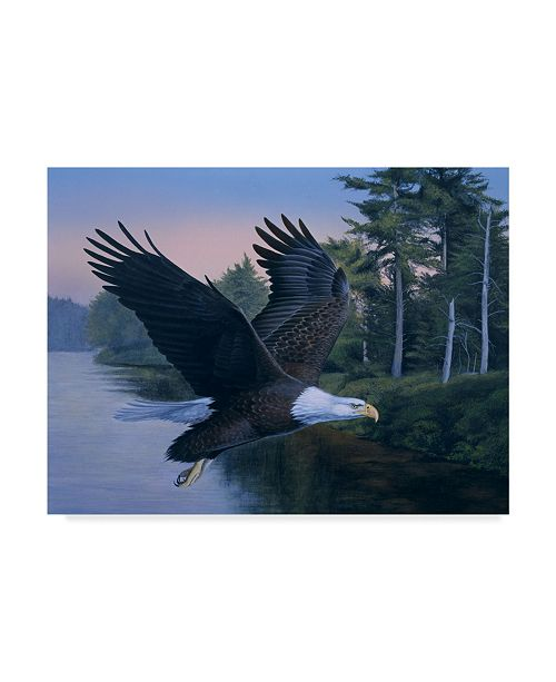 "Trademark Global Rusty Frentner 'Eagle Soaring' Canvas Art - 14"" x 19"""
