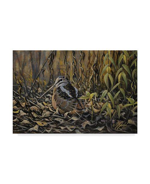 """Trademark Global Wilhelm Goebel 'Woodcock' Canvas Art - 12"""" x 19"""""""