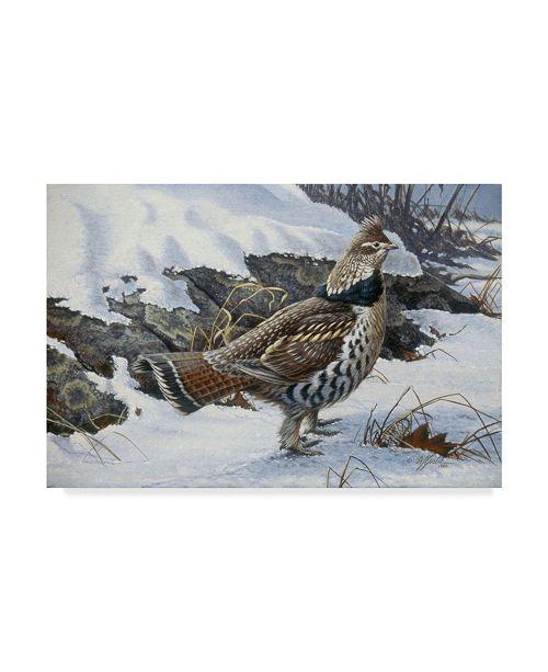 "Trademark Global Wilhelm Goebel 'Ruffed Grouse' Canvas Art - 12"" x 19"""