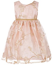 Baby Girls Floral Embroidered Party Dress