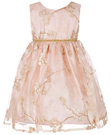 Blueberi Boulevard Baby Girls Floral Embroidered Party Dress