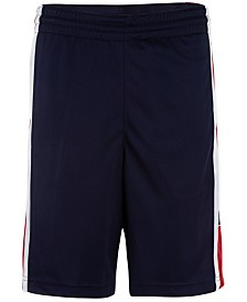 Jordan Little Boys Rise Colorblocked Shorts