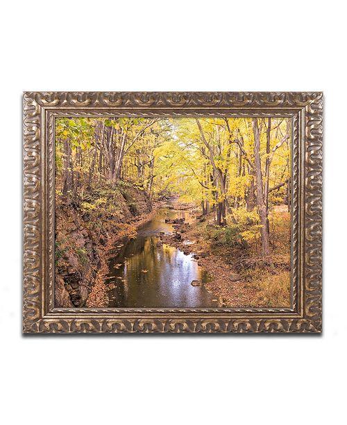 """Trademark Global Jason Shaffer 'Beaver Creek 5' Ornate Framed Art - 14"""" x 11"""""""