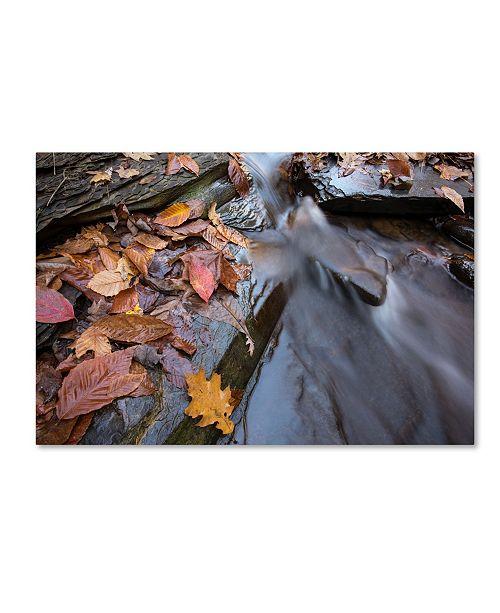 "Trademark Global Jason Shaffer 'Chance Creek 1' Canvas Art - 19"" x 12"""