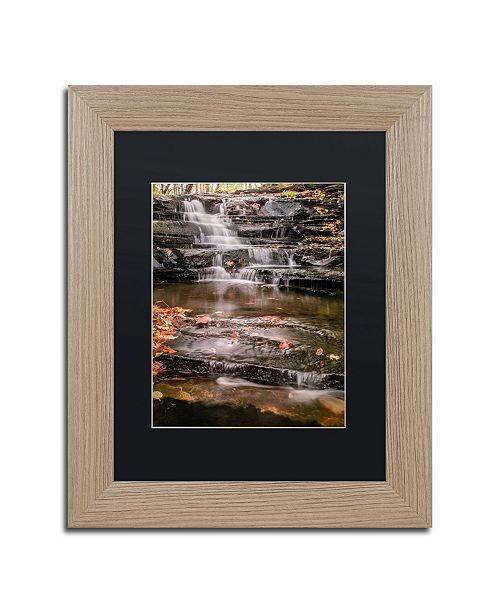 """Trademark Global Jason Shaffer 'Hidden Falls 2' Matted Framed Art - 11"""" x 14"""""""