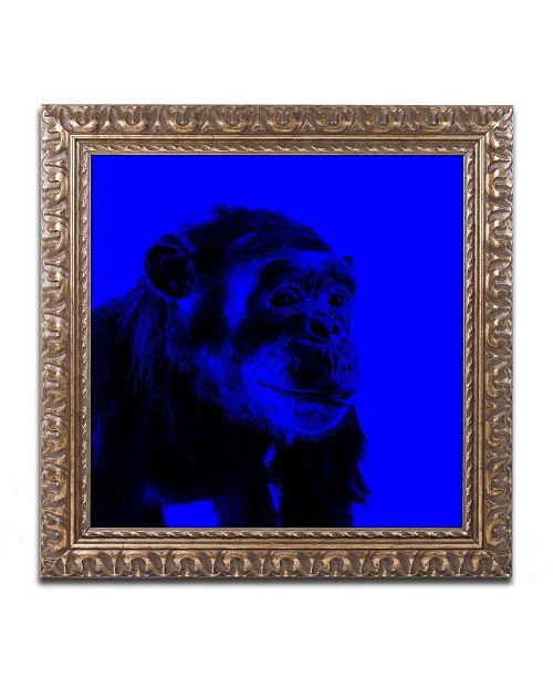 "Trademark Global Claire Doherty 'Chimp No 1' Ornate Framed Art - 11"" x 11"""