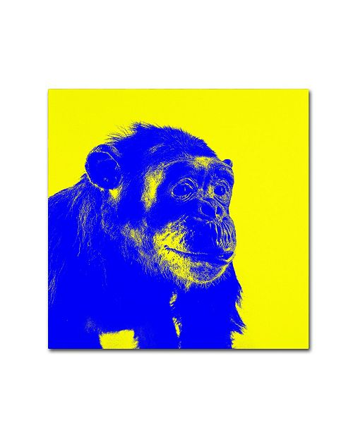 "Trademark Global Claire Doherty 'Chimp No 2' Canvas Art - 35"" x 35"""