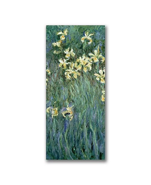 "Trademark Global Claude Monet 'The Yellow Irises' Canvas Art - 32"" x 18"""