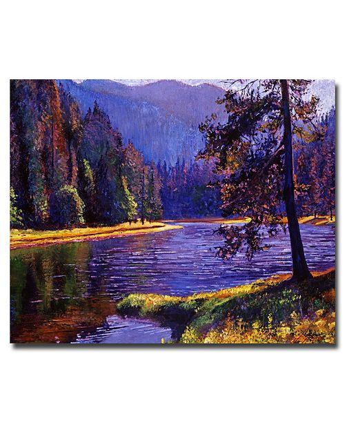 "Trademark Global David Lloyd Glover 'Lone Pine' Canvas Art - 32"" x 26"""