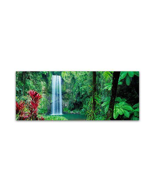 "Trademark Global David Evans 'Milla Milla Falls' Canvas Art - 24"" x 8"""
