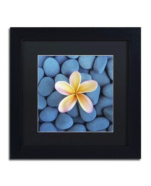 "Trademark Global David Evans 'Plumeria & Pebbles 6' Matted Framed Art - 11"" x 11"""
