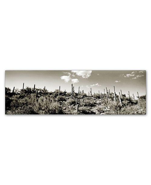 "Trademark Global Preston 'Desert' Canvas Art - 16"" x 47"""