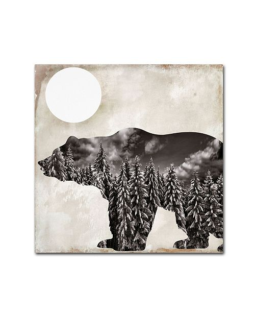 "Trademark Global Color Bakery 'Going Wild VI' Canvas Art - 24"" x 24"""