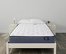 "Sleeptrue Alverson II 12"" Plush Mattress Collection"
