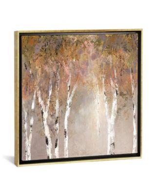 "Sunlit Birch Ii by Carol Robinson Gallery-Wrapped Canvas Print - 26"" x 26"" x 0.75"""