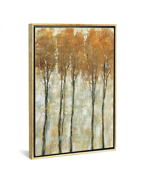 "iCanvas Standing Tall in Autumn Ii by Tim Otoole Gallery-Wrapped Canvas Print - 40"" x 26"" x 0.75"""