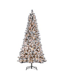 9-Foot High Flocked Pre-Lit Hard Mixed Needle Boise Pine with Warm White Lights
