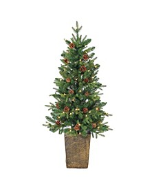 4Ft. Potted Natural Cut Georgia Pine with 100 clear lights