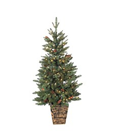 4Ft. Hard Mixed Needle Potted Natural Cut Riverton Pine with Pine Cones and Berries and 150 Clear Lights