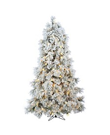 7.5Ft. Heavily Flocked Northern Pine with 750 Clear Lights and 85 G40 Warm White LED Lights