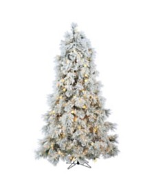 Sterling 7.5Ft. Heavily Flocked Northern Pine with 750 Clear Lights and 85 G40 Warm White LED Lights