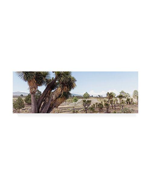 "Trademark Global Philippe Hugonnard Viva Mexico 2 Pyramid of Cantona Puebla X Canvas Art - 15.5"" x 21"""