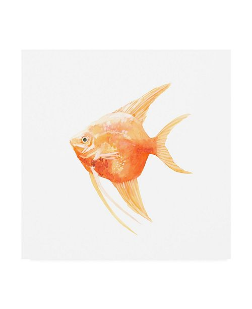 "Trademark Global Emma Scarvey Discus Fish III Canvas Art - 19.5"" x 26"""