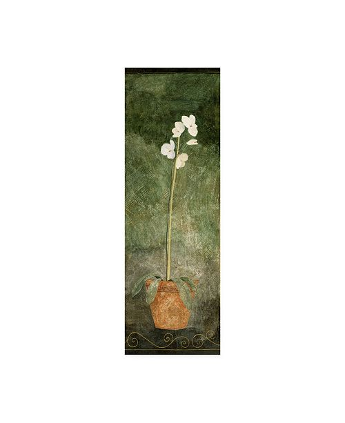 "Trademark Global Pablo Esteban White Orchid in Pot on Green Canvas Art - 15.5"" x 21"""
