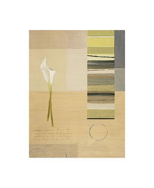 "Trademark Global Pablo Esteban White Calla Lilies with Stripes Canvas Art - 36.5"" x 48"""