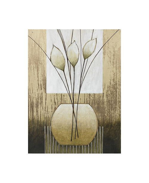 """Trademark Global Pablo Esteban White and Tan Floral Abstract Canvas Art - 19.5"""" x 26"""""""