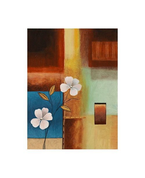 "Trademark Global Pablo Esteban Flowers and Squares Canvas Art - 15.5"" x 21"""