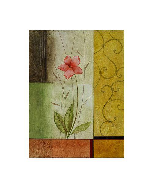"Trademark Global Pablo Esteban Pink Flower on Squares Canvas Art - 19.5"" x 26"""
