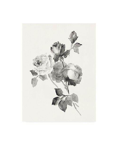 "Trademark Global Wild Apple Portfolio Rose Blossoms Gray Canvas Art - 27"" x 33.5"""