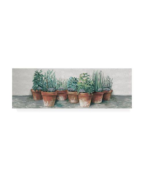 """Trademark Global Carol Rowan Pots of Herbs II Cottage v2 Canvas Art - 19.5"""" x 26"""""""