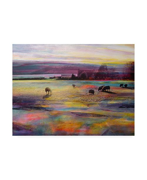 "Trademark Global Kate Boyc Balmy Summers Evening Canvas Art - 36.5"" x 48"""