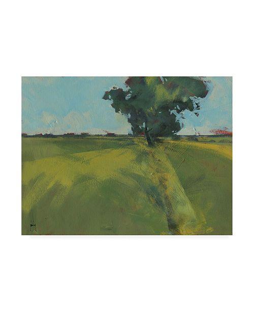 "Trademark Global Paul Baile Essex Field Canvas Art - 15.5"" x 21"""