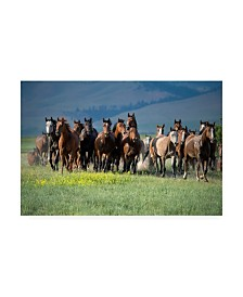 "Lisa Dearin Montana Thunder Canvas Art - 36.5"" x 48"""