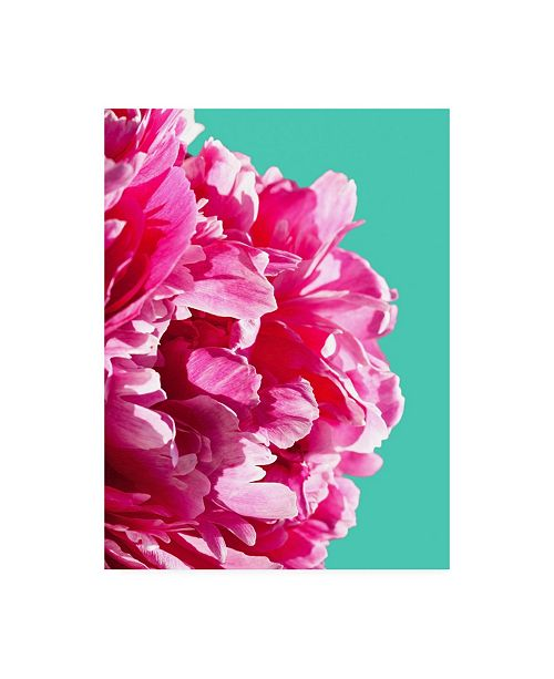 "Trademark Global Lexie Gree Pink Peony on Teal Canvas Art - 36.5"" x 48"""