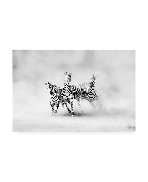 "Trademark Global Juan Luis Duran Three Zebras Canvas Art - 20"" x 25"""