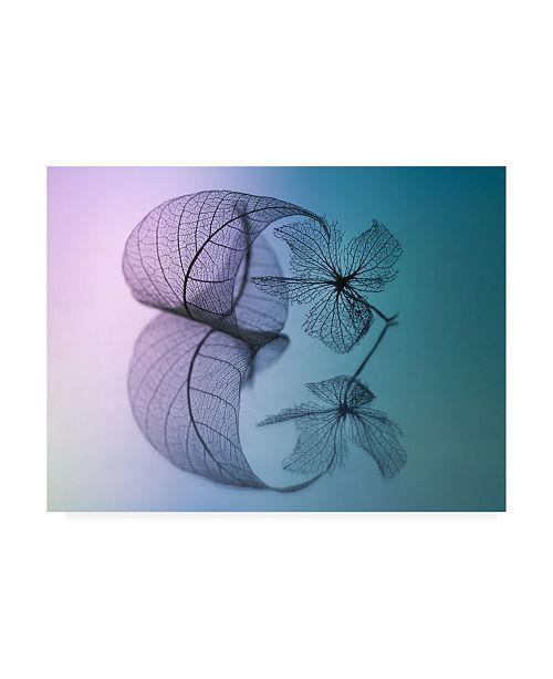 "Trademark Global Shihya Kowatari Story of Leaf and Flower Canvas Art - 20"" x 25"""