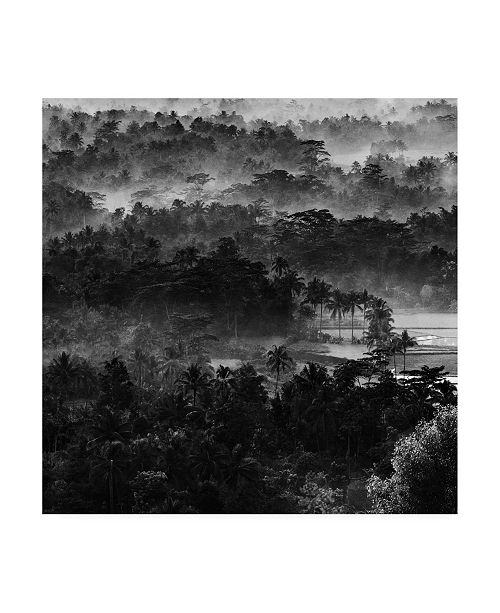 "Trademark Global Johanes Januar Mist in the Morning Forest Canvas Art - 15"" x 20"""
