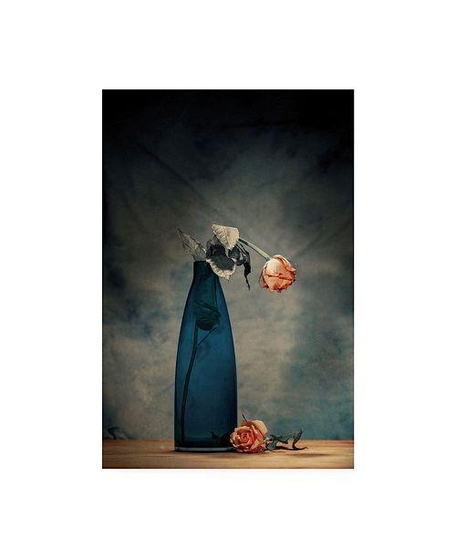 "Trademark Global Howard Ashton Jones Decay Dying Rose Canvas Art - 15"" x 20"""